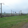 Альбом: Петрівка 2007 рік